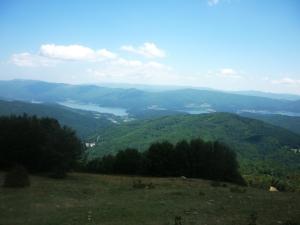 Foreste_della_Sila_con_lago_Arvo_sullo_sfondo