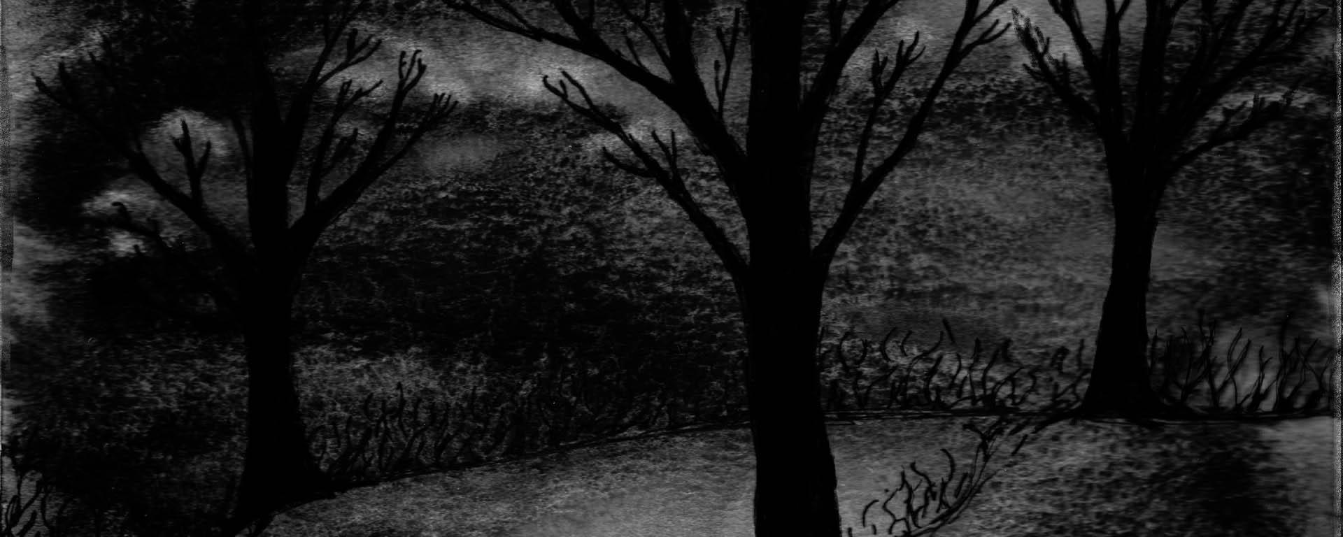 nighttime-tree-3-watermark-1920x768