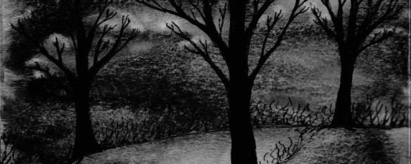 nighttime-tree-3-watermark-1920x768